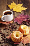 Two muffin and coffee Royalty Free Stock Photography