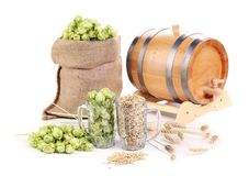 Two mugs with barley and hop. Royalty Free Stock Photo