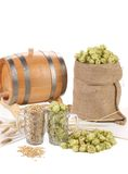Two mugs with barley and hop. Stock Photos