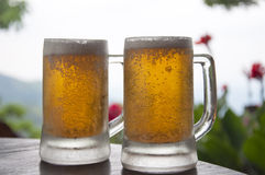 Two Mugs of Chilled Beer Royalty Free Stock Images