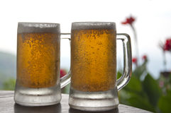 Two Mugs of Chilled Beer Royalty Free Stock Photo