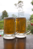 Two Mugs of Chilled Beer Royalty Free Stock Image