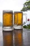 Two Mugs of Chilled Beer Stock Photography