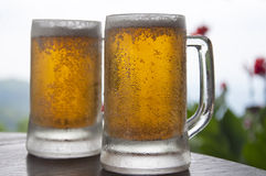 Two Mugs of Chilled Beer Royalty Free Stock Photos