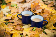Two mugs of hot coffee Royalty Free Stock Image