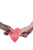 Two multi racial hands Stock Photography