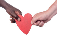 Two multi racial hands Royalty Free Stock Image