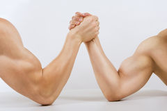 Two muscular hands arm wrestling. Two muscular hands clasped arm wrestling Royalty Free Stock Image