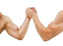 Two muscular hands clasped arm wrestling, isolated Royalty Free Stock Photos