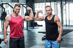 Two muscular men flexing biceps royalty free stock photography
