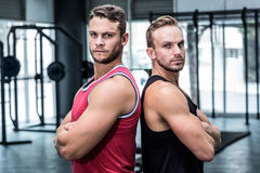 Two muscular men giving back to back. Portrait of two muscular men giving back to back Stock Photos