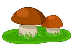 Two mushrooms with green grass Stock Image