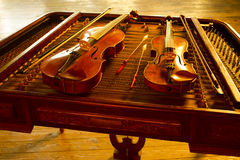 Two music string instrument. In gold light Stock Images