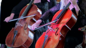 Two Musicians Playing Cello At Concert. CLOSE UP SHOT of two violinists playing cello at concert of symphony music stock video footage