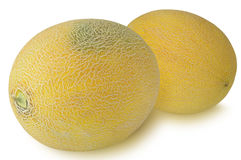 Two Muskmelon isolated on white background Royalty Free Stock Photo