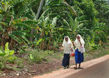 Two muslim schoolgirls in headscarves walk along road in jungle. Royalty Free Stock Photos