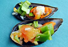 Two mussels Stock Image