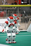 Two Nao Robots from the Robocup 2009 Royalty Free Stock Image