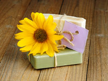 Two natural soap bars Royalty Free Stock Photography