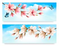 Two Nature banners with blossom branch Royalty Free Stock Image