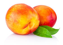 Two nectarine fruit isolated on white background Stock Photo
