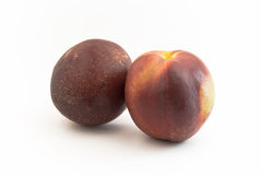 Two Nectarines. Two Nectarine fruits on white background stock images