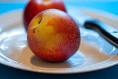 Nectarine on plate with knife royalty free stock images