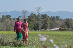 Two nepali tharu women walk in countryside, Nepal Stock Image