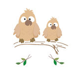 Two nestling owls. Vector illustratsia. The image of two little owl nestlings sitting on a branch Royalty Free Stock Images