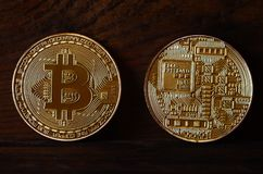 Two new golden physical bitcoins lies on dark wooden backgound, close up. High resolution photo. Cryptocurrency mining concep. T Royalty Free Stock Images