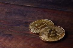 Two new golden physical bitcoins lies on dark wooden backgound, close up. High resolution photo. Cryptocurrency mining concep. T Royalty Free Stock Image