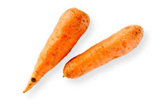 Two Nice Carrots Royalty Free Stock Images