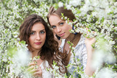 Two nice caucasian ladies. Posing in blooming garden Stock Photos