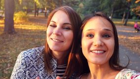 Two nice-looking cheerful girls making selfie photo in autumn park. 3840x2160 stock footage