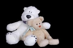 Two nice teddy bears. Are siting together Royalty Free Stock Image