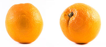 Two nicely colored oranges on a white background - front and back.  Stock Photos