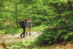 Two nordic walkers. Young couple nordic walking on path in the forest Stock Image
