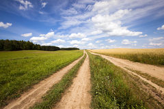 Two rural roads Royalty Free Stock Image