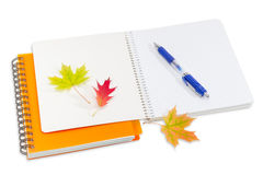 Two notebooks, pen and a few autumn leaves Stock Photography