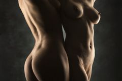 Two nude females. Royalty Free Stock Image