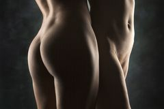 Two nude females. Royalty Free Stock Photography