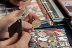 Two numismatists examines collection of coin royalty free stock photos