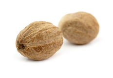 Two nutmeg isolated Stock Photography