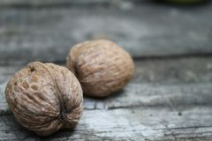 Two nuts on a table royalty free stock photography