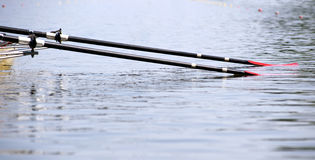 Two Oars. Resting in the water, just before the start signal of a rowing regatta Royalty Free Stock Images