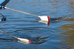 Two oars splashing in water. Ladies 8 rowing team with blades dipping into river Avon Stock Photos
