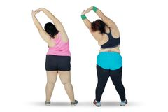 Two obese woman stretching hands on studio. Rear view of two obese women wearing sportswear while stretching hands together in the studio, isolated on white royalty free stock photography
