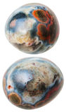 Two Ocean (Orbicular) jasper gemstones isolated Stock Images