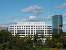 Two Office Buildings. View of two office buildings framed by blue sky and fall trees royalty free stock photography