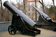 Two old artillery cannons Stock Photos
